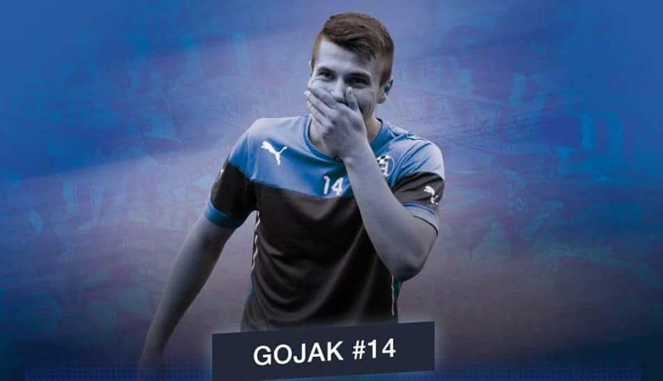 Amer Gojak